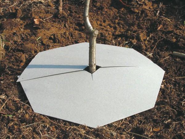 Toplan - Mulchplatte